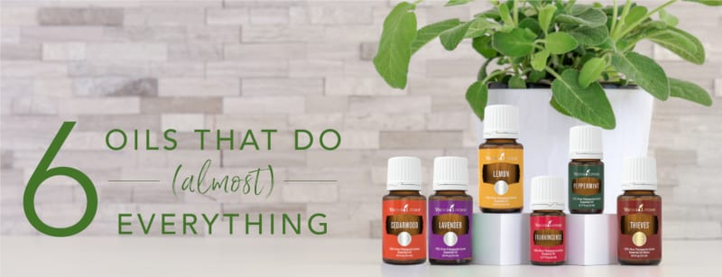 essential oils can be used as a supplement to support various body systems