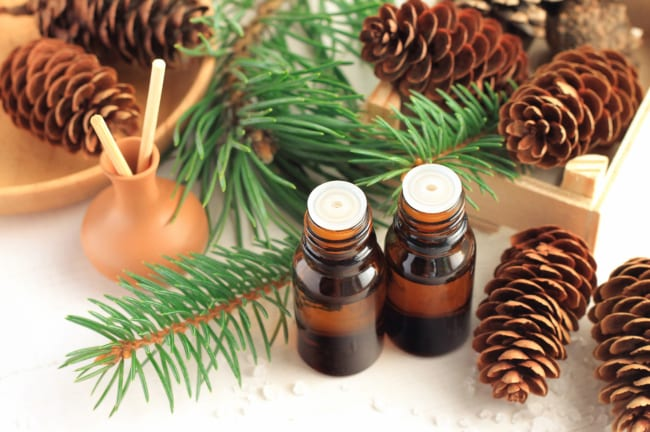 How Essential Oils Can Boost Your Holiday Spirit